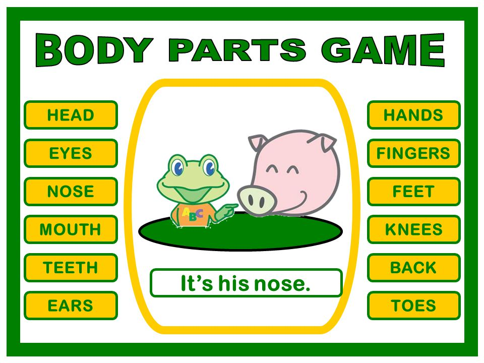 BODY PARTS GAME It's his nose. HEAD HANDS EYES FINGERS NOSE FEET MOUTH