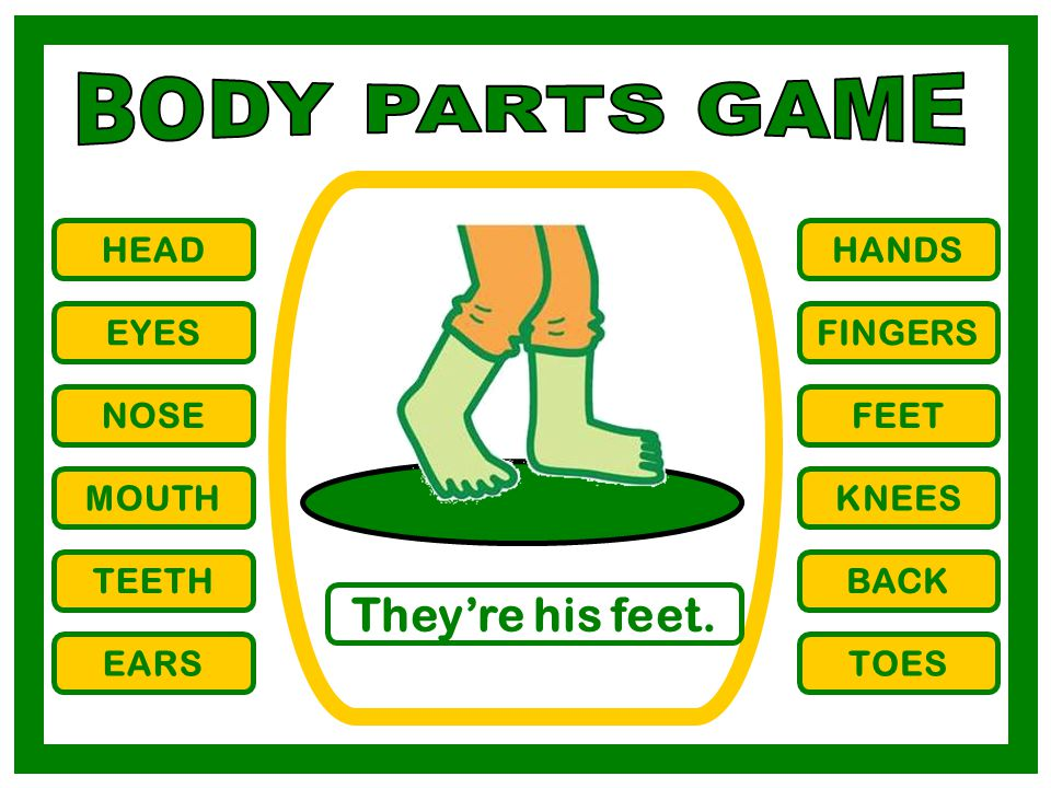 BODY PARTS GAME They're his feet. HEAD HANDS EYES FINGERS NOSE FEET