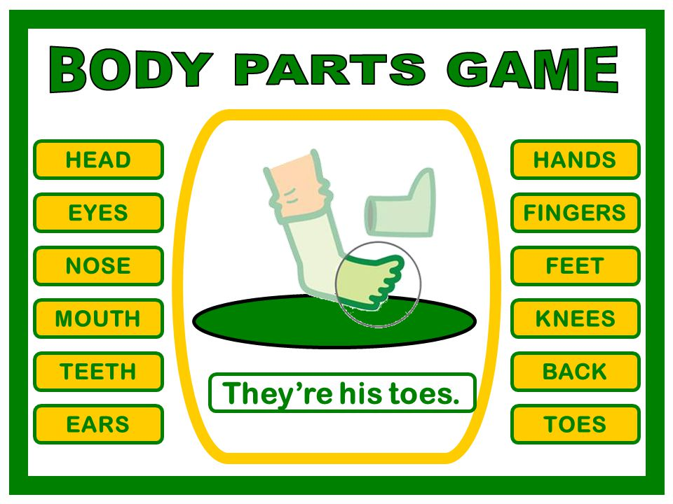 BODY PARTS GAME They're his toes. HEAD HANDS EYES FINGERS NOSE FEET