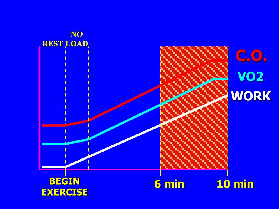 NO LOAD REST C.O. VO2 WORK BEGIN EXERCISE 6 min 10 min