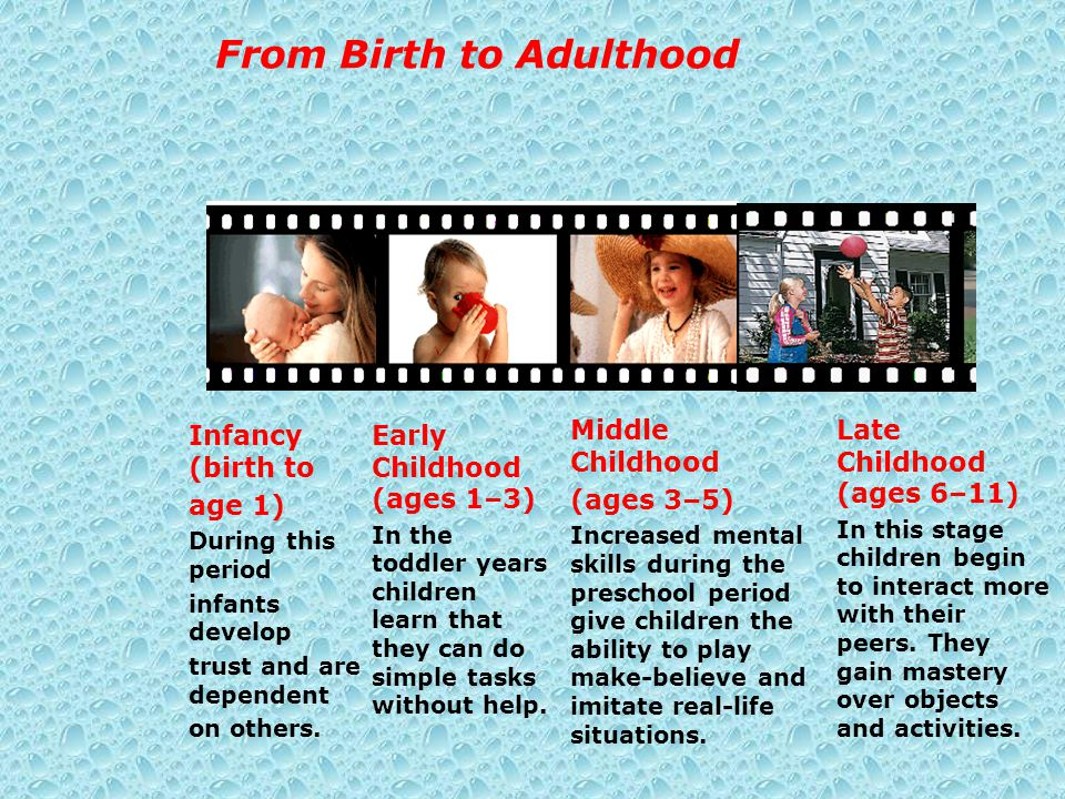 From Birth to Adulthood