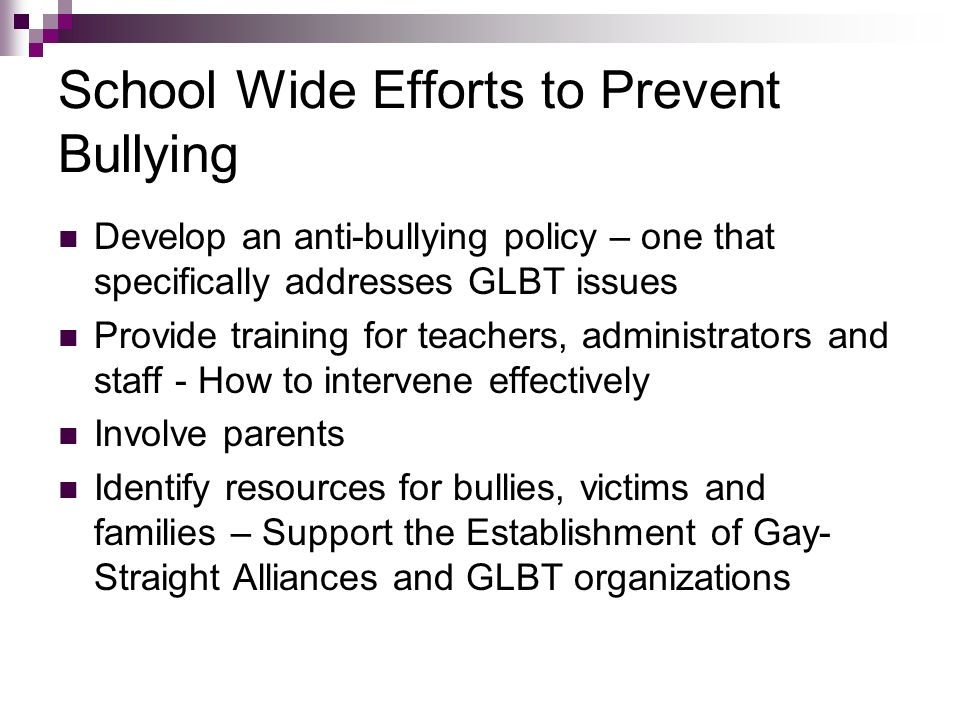 School Wide Efforts to Prevent Bullying