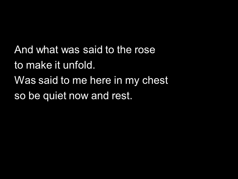 And what was said to the rose