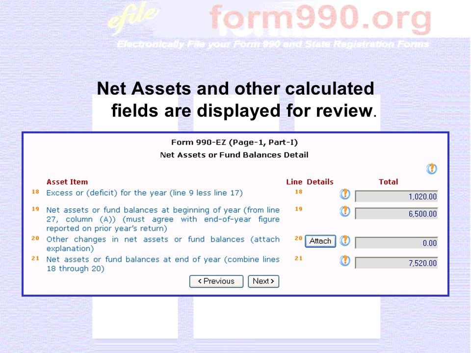 Net Assets and other calculated fields are displayed for review.