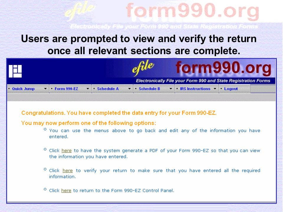 Users are prompted to view and verify the return once all relevant sections are complete.