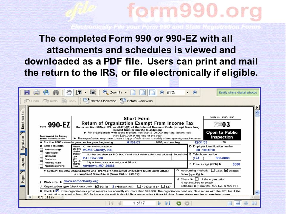 The completed Form 990 or 990-EZ with all attachments and schedules is viewed and downloaded as a PDF file.