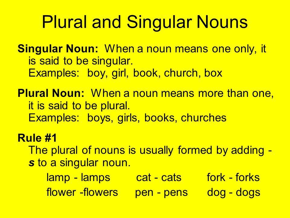 singular and plural nouns list pdf