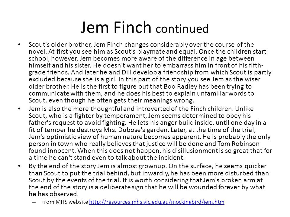 characteristics of jem finch