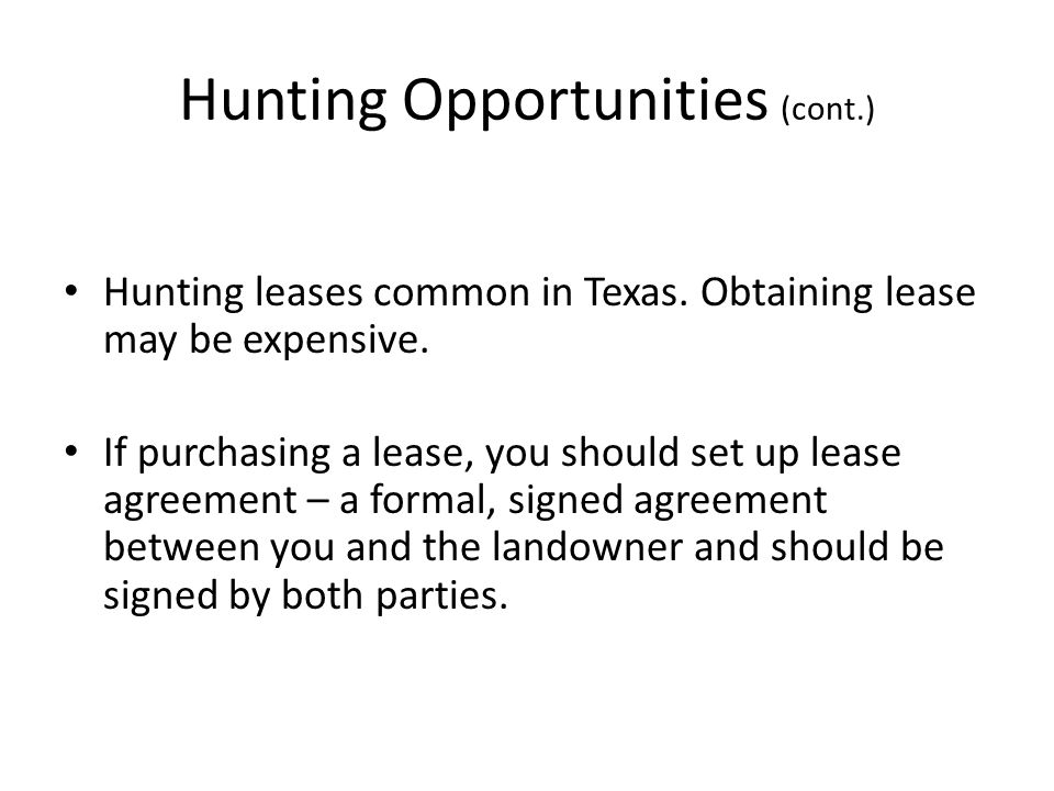 Lesson Seven Be A Responsible And Ethical Hunter Ppt Video Online