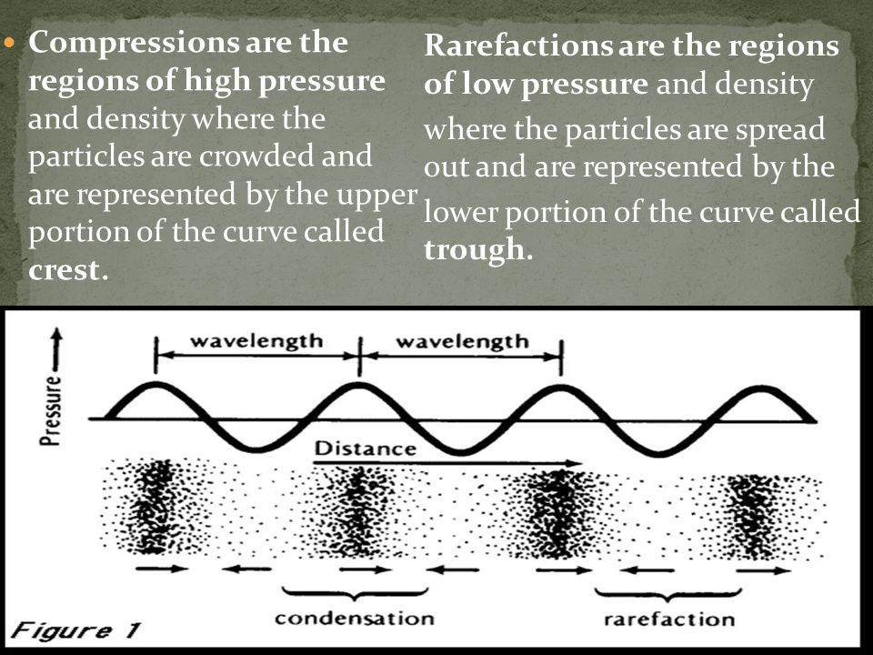Compressions are the regions of high pressure and density where the particles are crowded and are represented by the upper portion of the curve called crest.