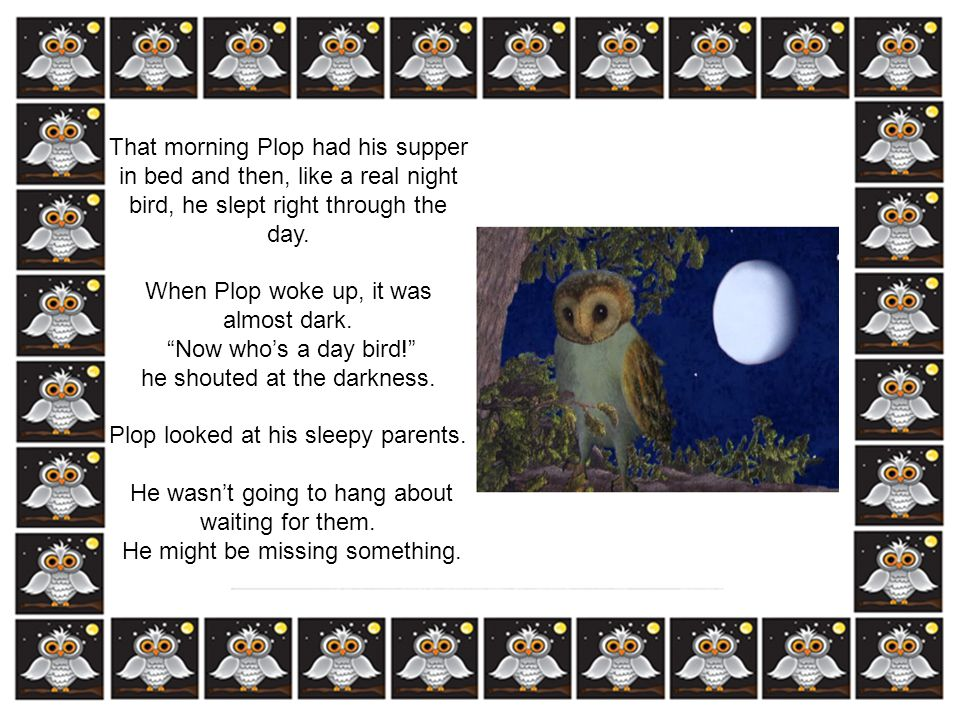When Plop woke up, it was almost dark. Now who's a day bird!