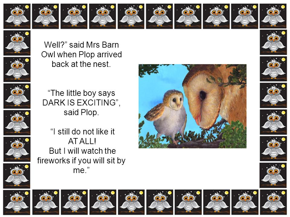 Well said Mrs Barn Owl when Plop arrived back at the nest.