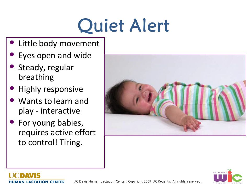Quiet Alert Little body movement Eyes open and wide
