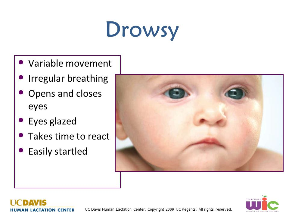Drowsy Variable movement Irregular breathing Opens and closes eyes