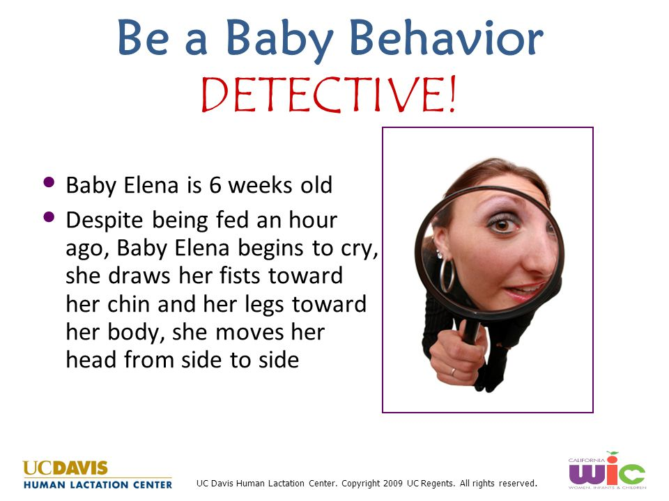 Be a Baby Behavior DETECTIVE!