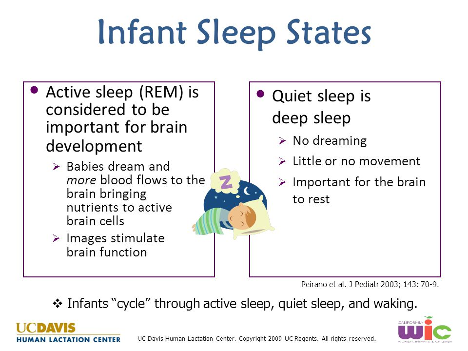 Infant Sleep States Active sleep (REM) is considered to be important for brain development.