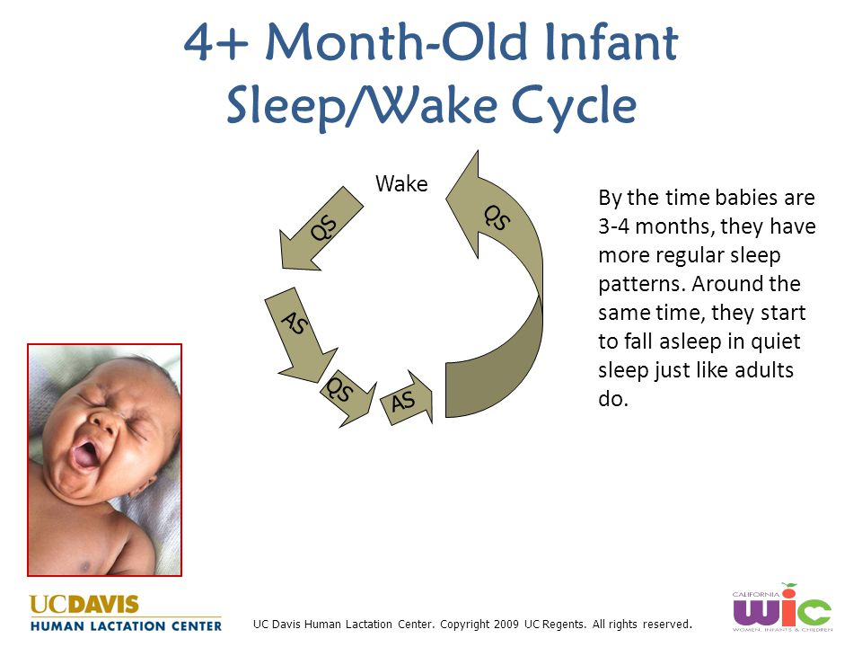 4+ Month-Old Infant Sleep/Wake Cycle