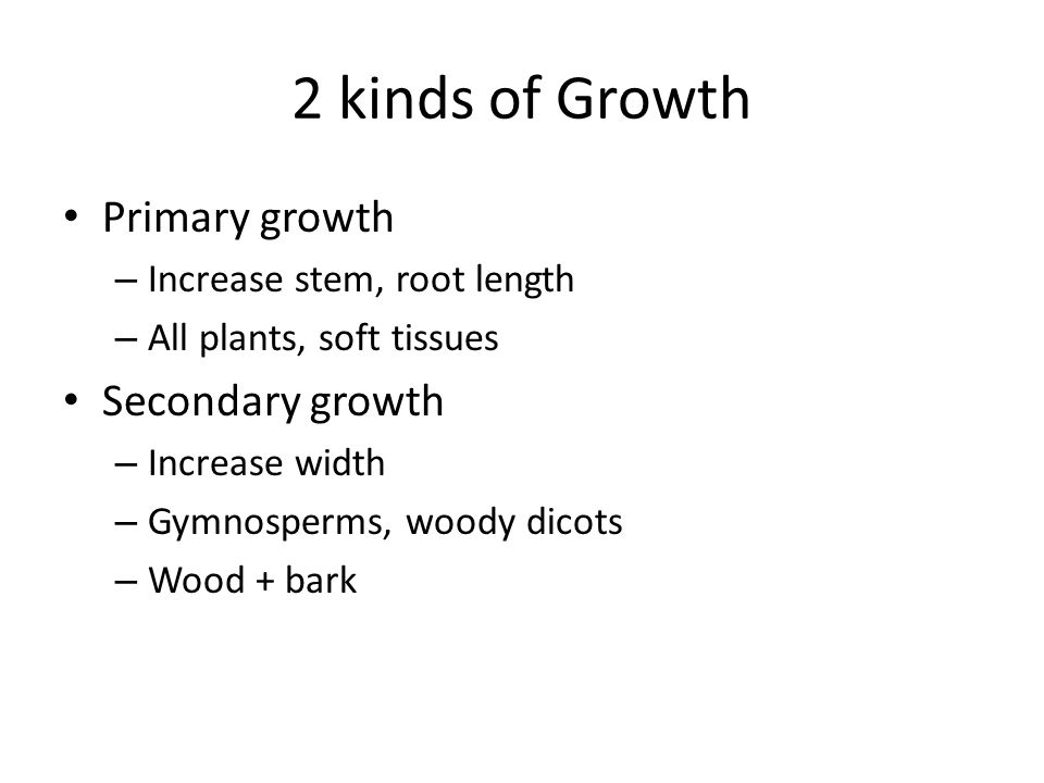2 kinds of Growth Primary growth Secondary growth