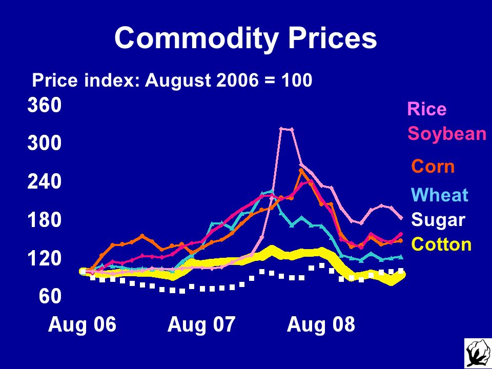 Commodity Prices Price index: August 2006 = 100 Rice Soybean Corn