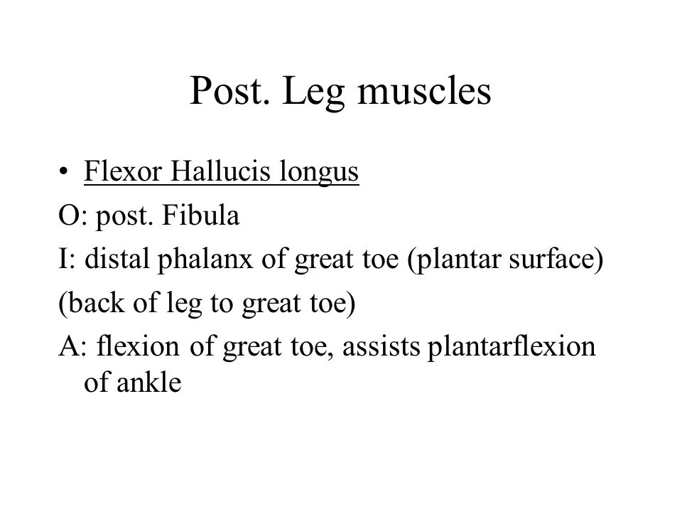 Post. Leg muscles Flexor Hallucis longus O: post. Fibula