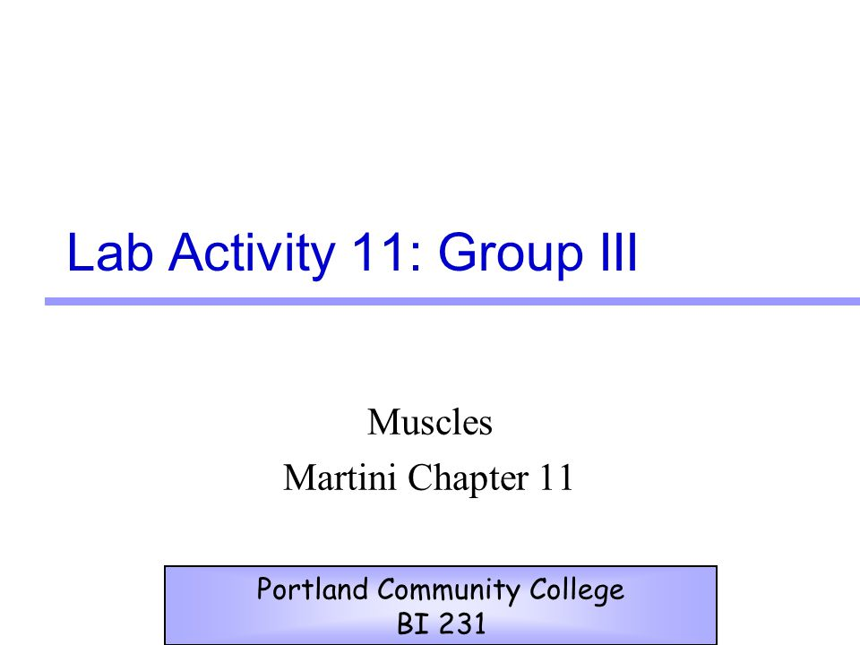 Lab Activity 11: Group III