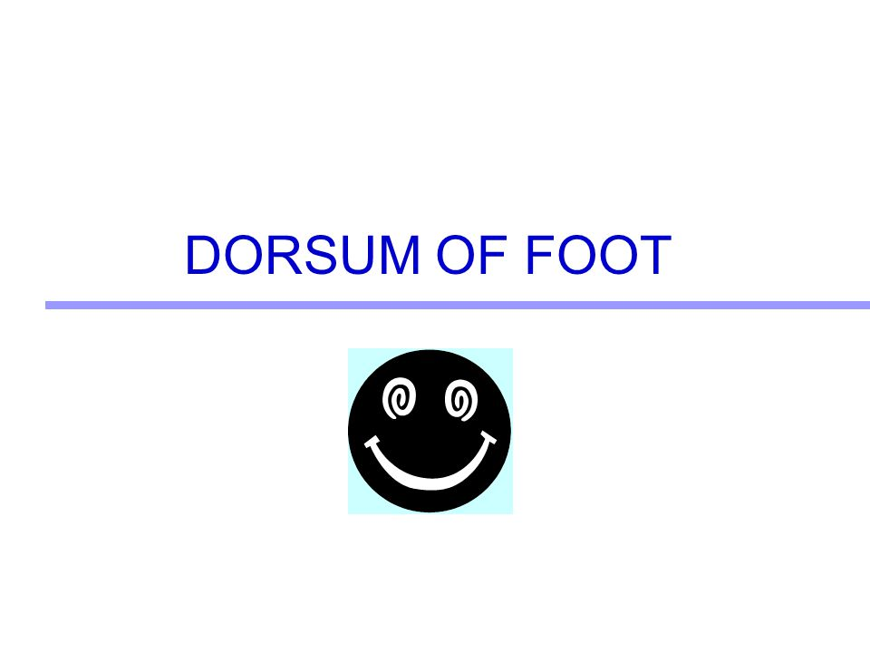 DORSUM OF FOOT