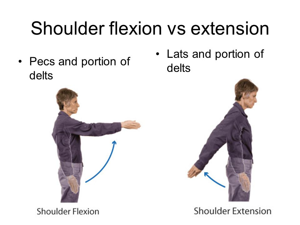 Shoulder flexion vs extension