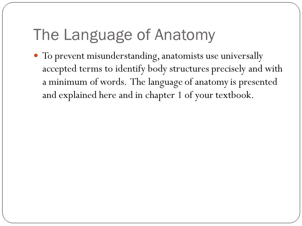 Unit 1: Organization of the Body - ppt video online download