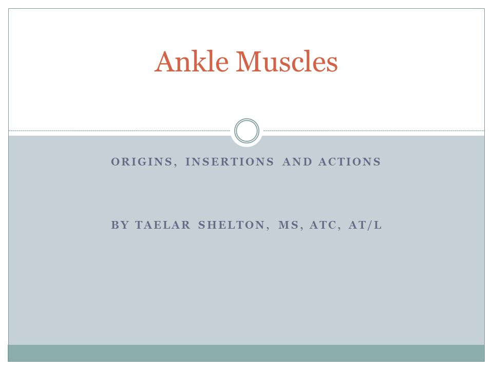 ORIGINS, INSERTIONS AND ACTIONS BY TAELAR SHELTON, MS, ATC, AT/L