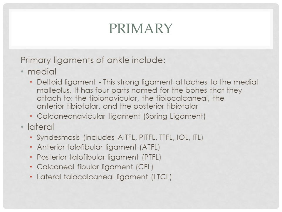 Primary Primary ligaments of ankle include: medial lateral