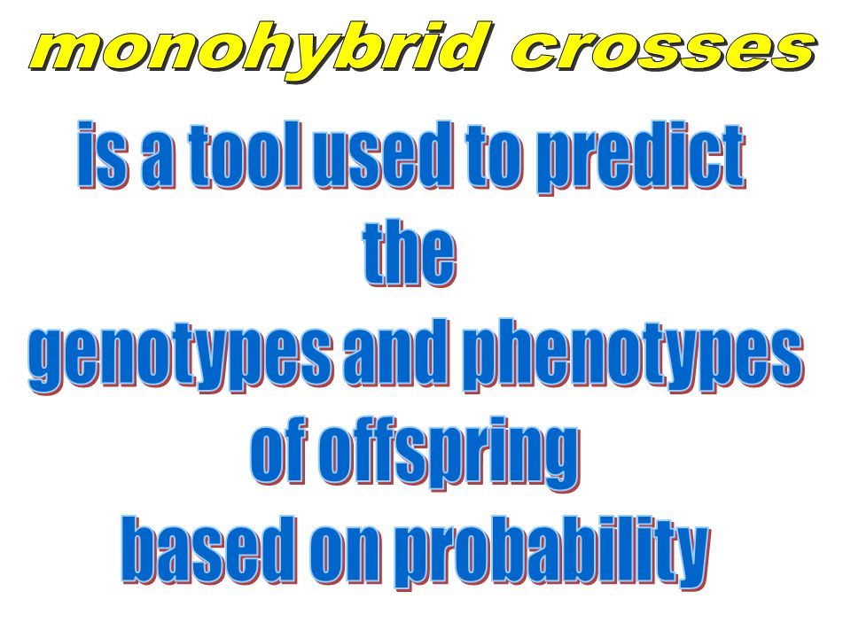 is a tool used to predict the genotypes and phenotypes of offspring
