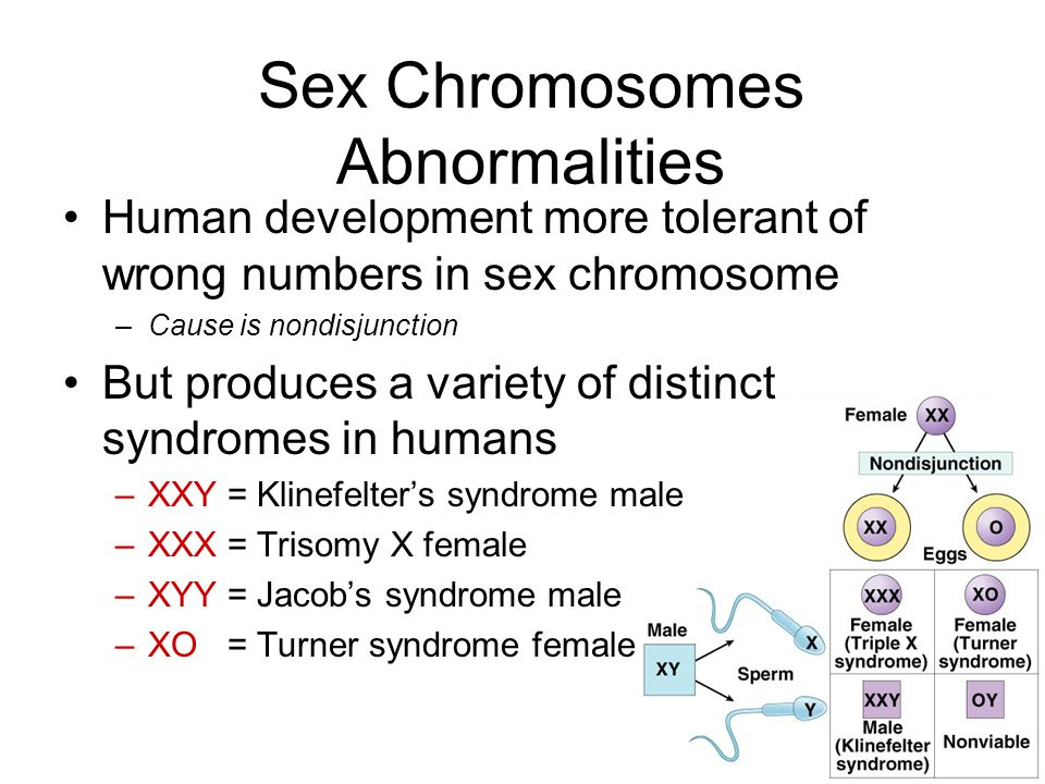 Chromosomal problems sex