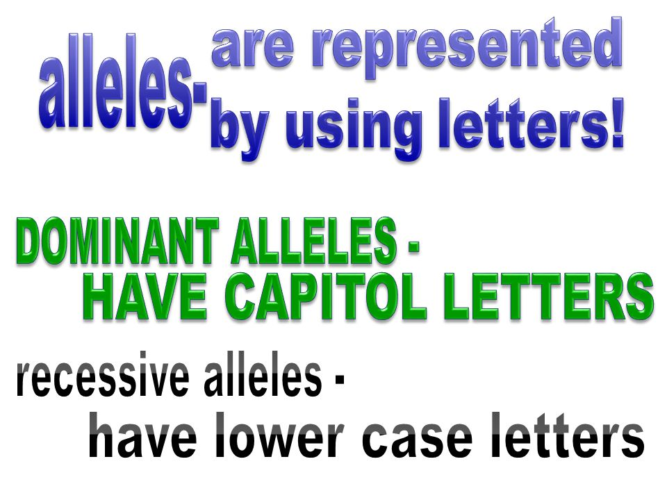 have lower case letters