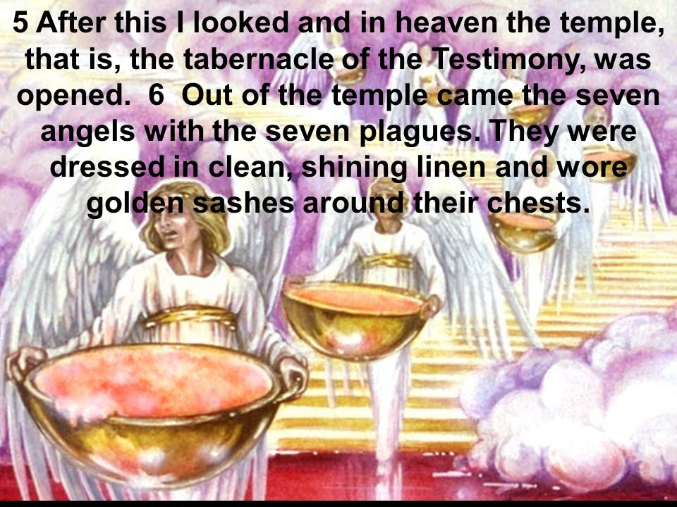 5 After this I looked and in heaven the temple, that is, the tabernacle of the Testimony, was opened.