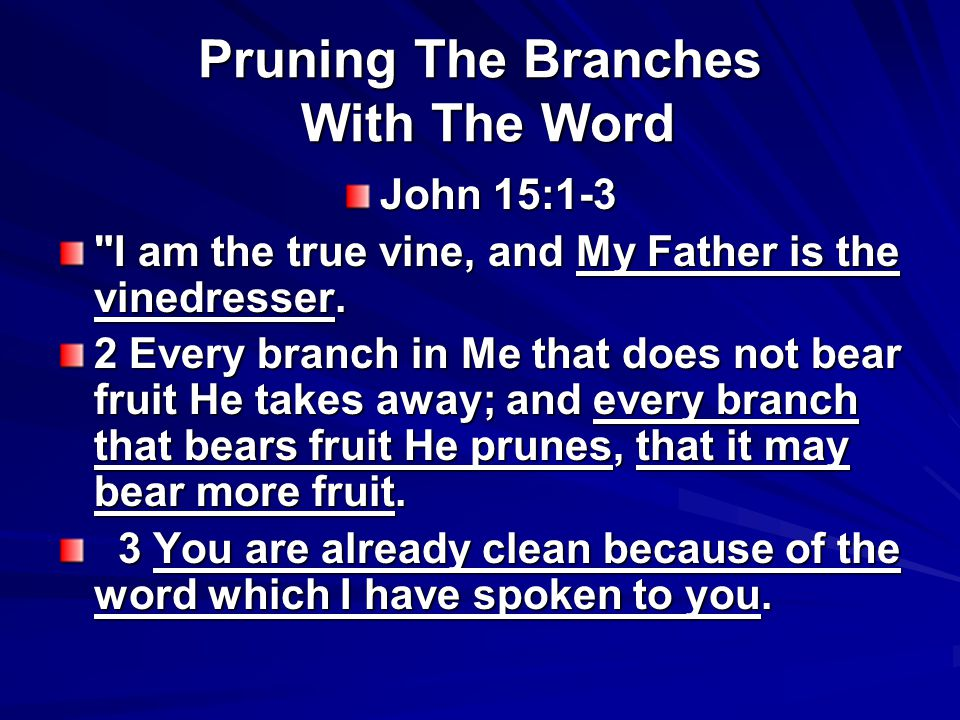 Pruning The Branches With The Word