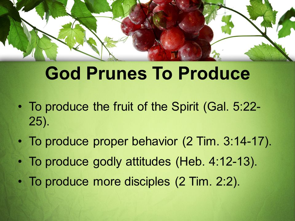 God Prunes To Produce To produce the fruit of the Spirit (Gal. 5:22- 25). To produce proper behavior (2 Tim. 3:14-17).