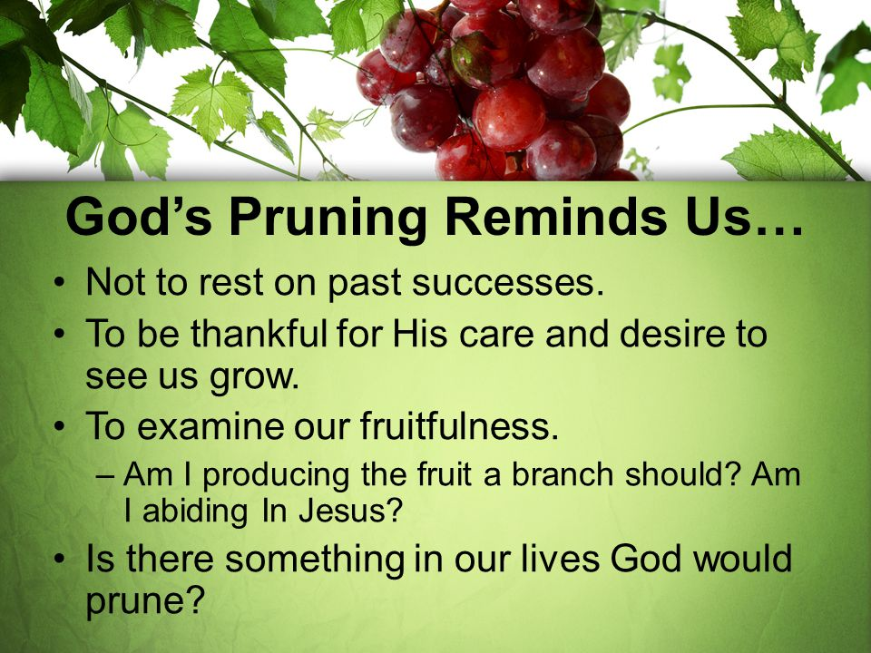 God's Pruning Reminds Us…