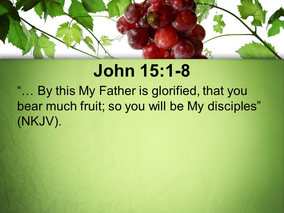 John 15:1-8 … By this My Father is glorified, that you bear much fruit; so you will be My disciples (NKJV).