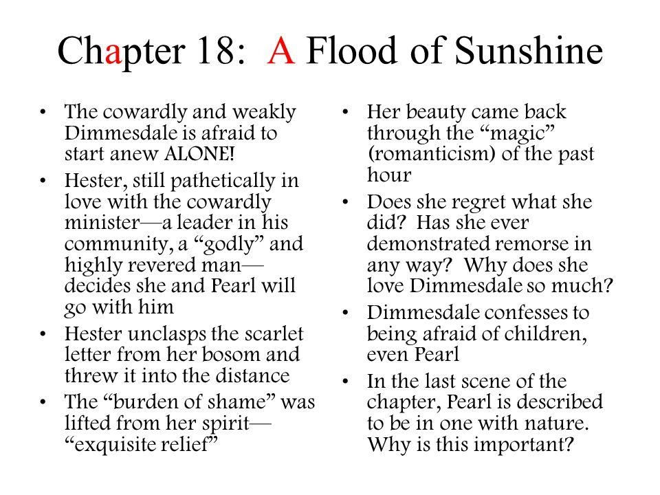 The Scarlet Letter Nathaniel Hawthorne   ppt download