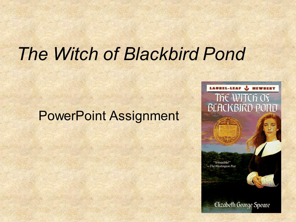 what is the theme of the witch of blackbird pond