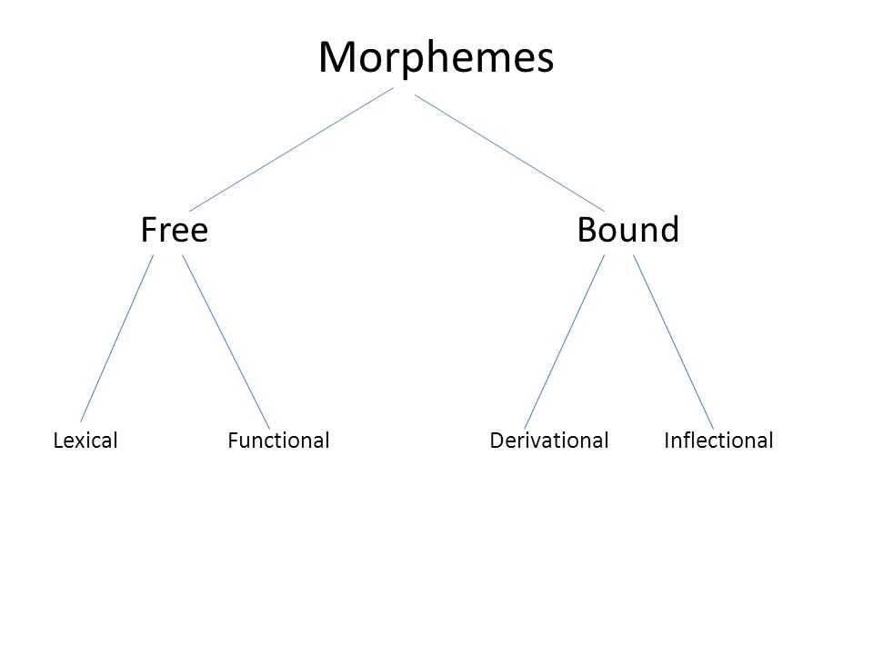 Morphemes Free Bound Lexical Functional Derivational Inflectional
