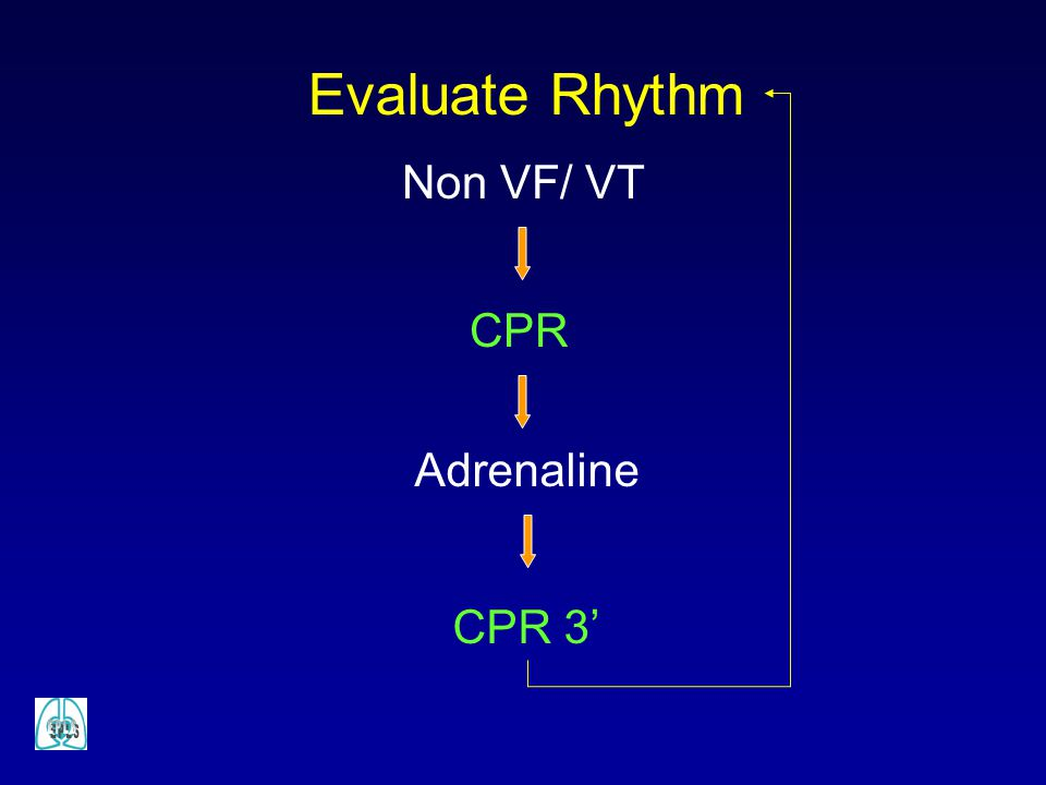 Evaluate Rhythm Non VF/ VT CPR Adrenaline CPR 3'