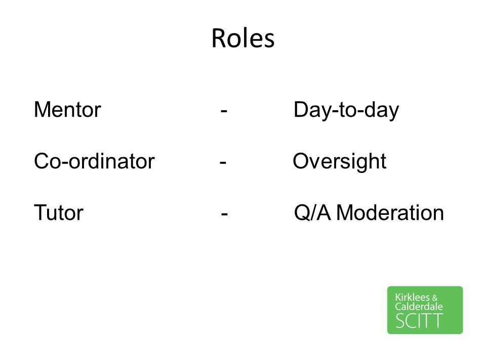 Roles Mentor - Day-to-day Co-ordinator - Oversight