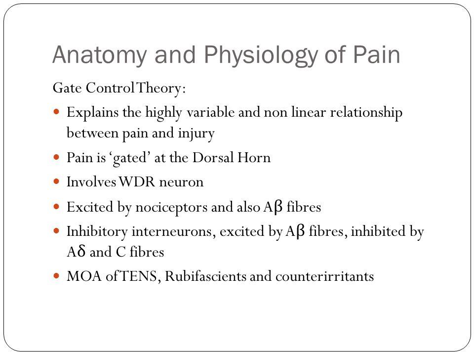 Pathophysiology of Pain Treatment of Acute Postoperative Pain - ppt ...