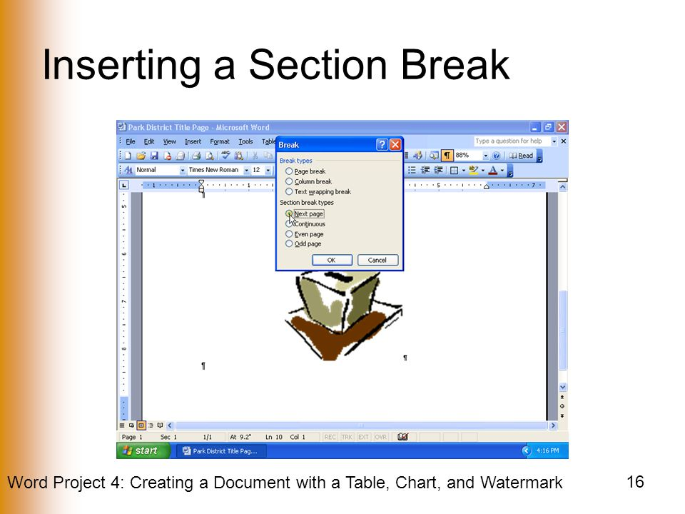 Inserting a Section Break