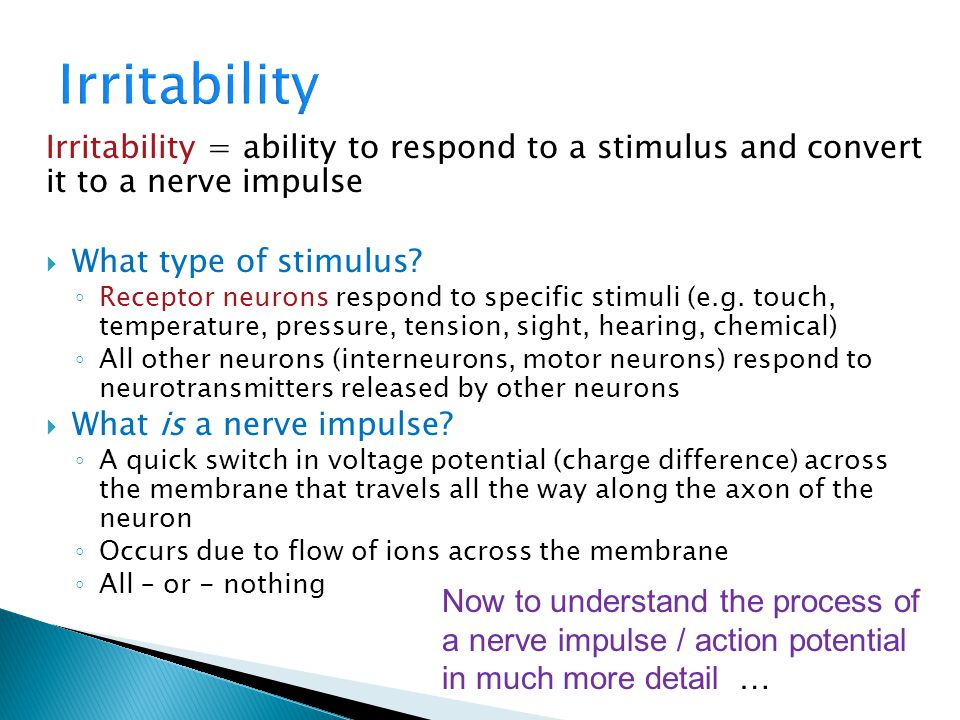 Irritability Irritability = ability to respond to a stimulus and convert it to a nerve impulse. What type of stimulus