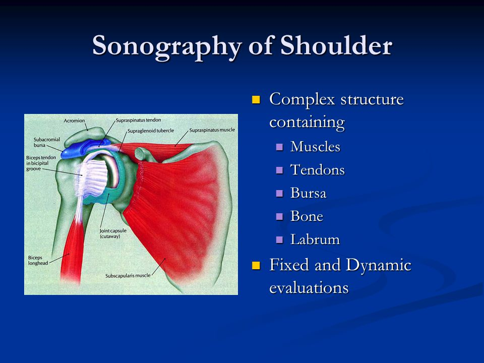Intro to Musculoskeletal Ultrasound of the Shoulder - ppt video ...