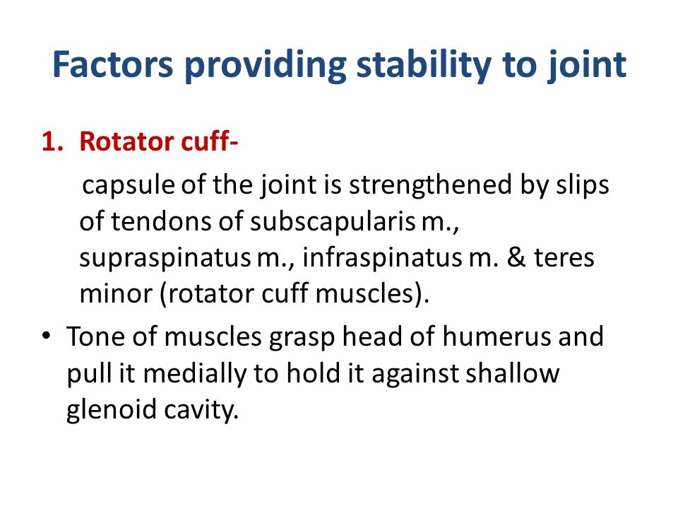 Factors providing stability to joint