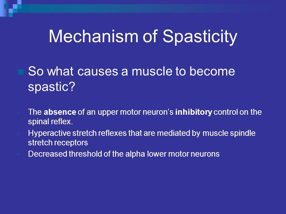 Spasticity What Causes it and Can it be Inhibited? - ppt