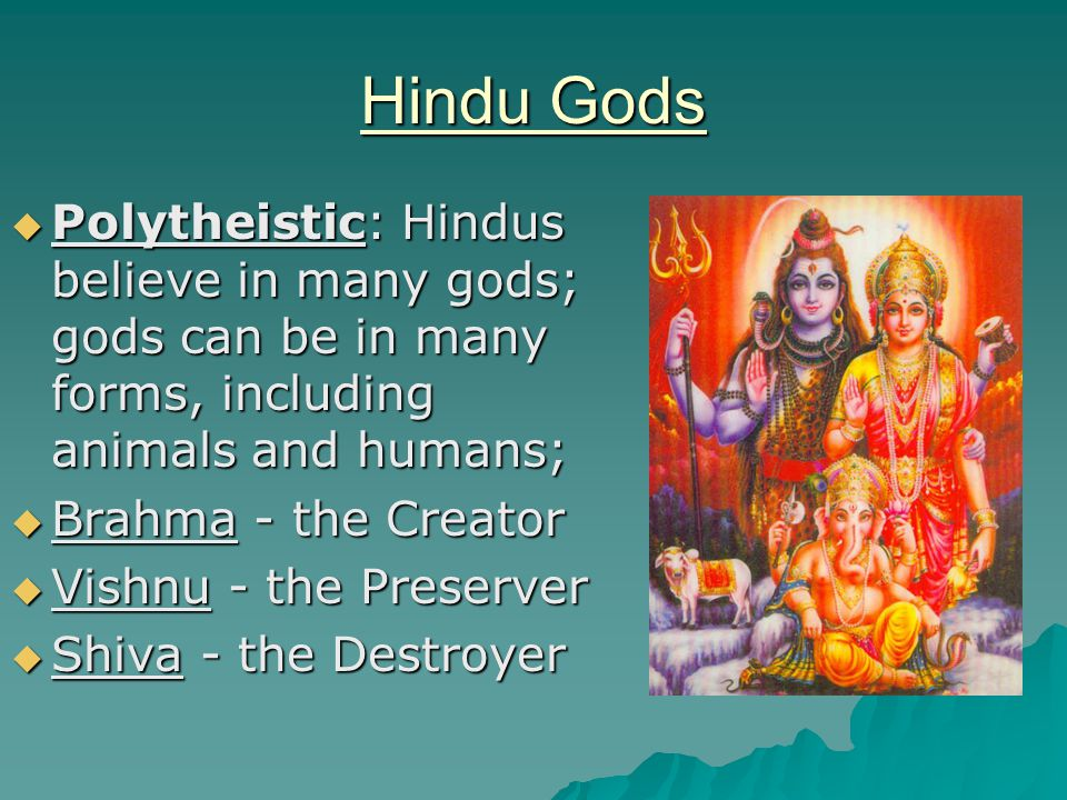 Hindu Gods Polytheistic: Hindus believe in many gods; gods can be in many forms, including animals and humans;